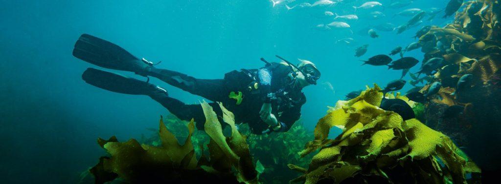 action cam Nikon KeyMission 180 pour la plongée