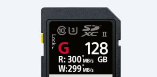 Carte SD Sony SF-G